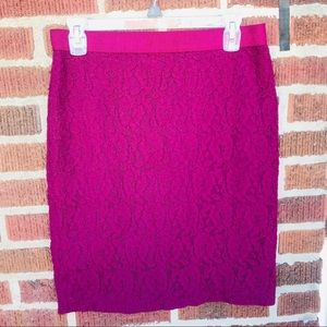 Ann Taylor Knit Lace Fitted Pencil Skirt